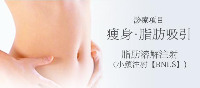 診療項目:痩身・脂肪吸引