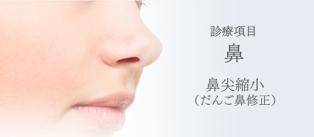 診療項目:鼻