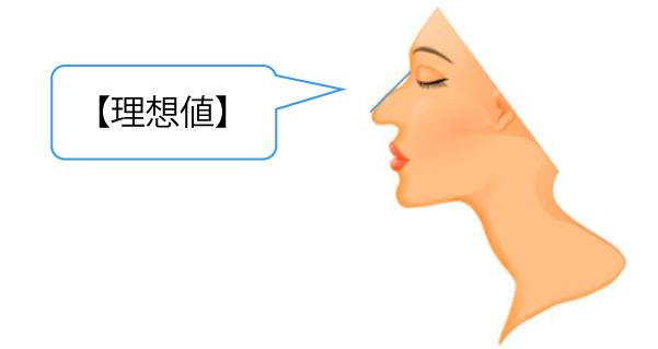 わし鼻の程度について